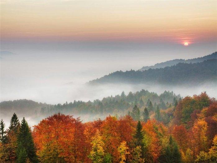 туманная осень 5